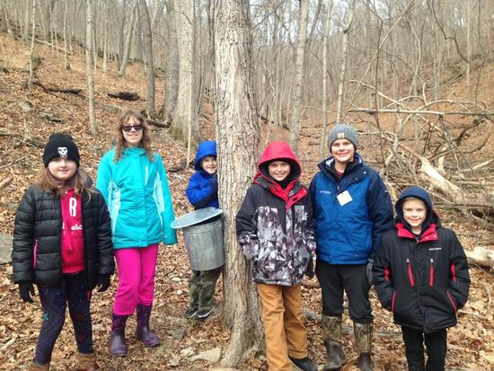 Maple Sugaring - field trip