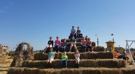 Pumpkin Patch- Field Trip