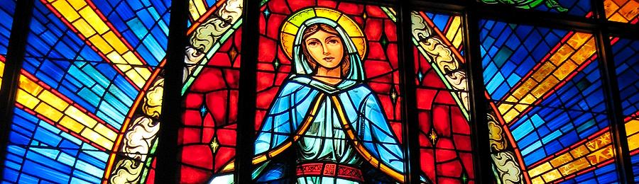 Our Lady of Grace Home Educators