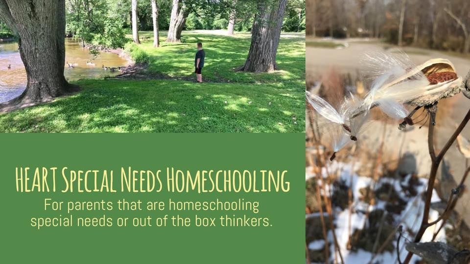 HEART Special Needs Homeschooling